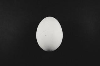 Egg Macro Mondays