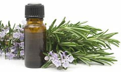 Rosemary essential oil (LifeIsEnjoy.net) Tags: rosemary rosmarinus officinalis herb oil plant essential mediterraneancuisine mediterraneanfood spice seasoning season aroma therapy herbal green pink bottle aromatic aromatherapy spa treatment odour cooking cuisine fresh branch