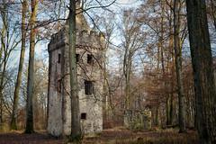 Ruine im Wald (BKFofOF) Tags: huwolfgang d610 nikon 50mm klosterruine ruine stwolfgang