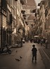 All Gods Creatures (hendersonimages) Tags: firenze italia florence italy duomo street boy pigeon italians sepia