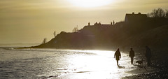 Golden hour (Halfbike) Tags: alnmouth beachwalking seaside lumixgh4