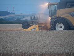Harvest time (Charlie Brown*) Tags: harvest olympus combine em1 newholland