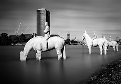 The Rising Tide (TS446Photo) Tags: city longexposure blackandwhite bw horse white black reflection london art westminster thames river rising nikon tide stop le 16 vauxhall manfrotto befree 1835mm nikon1835mm therisingtide 10stop 6stop nikondf