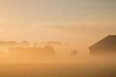 Barn in the mist