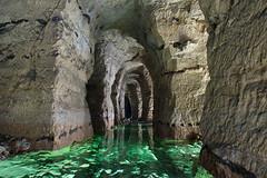 Galerie inondée (flallier) Tags: carrière souterraine craie underground chalk quarry galerie inondée eau water silex phosphate phosphatière engrais pond nikon nikkor d700 ais 20mm