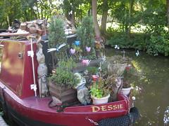 151009_15 (Bushy Park Boy) Tags: plants walking canals warwickshire midlands longwalks narrowboats onlyconnect coventrycanal b2e beestontoexeter