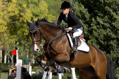 Show Jumping CCVM (Myprofe) Tags: madrid horse salto countryclub rider equestrian showjumping hipica saltodeobstculos clubdecampovillademadrid ccvm saltodecaballo campeonatodesalto