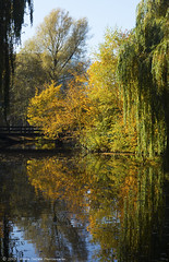 Autumnal Reflections (Patrick Dirden) Tags: park blue autumn trees sky orange holland reflection green fall water netherlands amsterdam yellow outdoors pond europe willow recreation nl weepingwillow beatrixpark amsterdamzuid