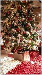 DSCI8516 (aad.born) Tags: christmas xmas weihnachten navidad noel  tuin engel nol natale  kerstmis kerstboom kerst boi kerststal  kribbe versiering kerstshow  kerstversiering kerstballen kersfees kerstdecoratie tuincentrum kerstengel  attributen kerstkind kerstgroep aadborn nativitatis