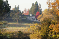 Fall Northern California (rschnaible) Tags: california house fall home colors architecture creek walking landscape outdoors colorful walk walnut foliage northern