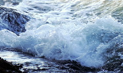 Magic (Khaled M. K. HEGAZY) Tags: nikon coolpix p520 alexandria egypt nature outdoor closeup macro blue white black sea mediterranean water wave montazahbay بحر البحرالمتوسط موجة أمواج صخور صخرة meer