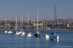 Row of Boats, San Diego Bay (charlestheneedler) Tags: aircraftcarriertheodoreroosevelt cvn71 sandiegobay sandiegoskyline shelterisland theodoreroosevelt