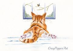 Window Shopping (GREY PEPPER ART) Tags: ginger marmalade cats kittens hunting robin watching watercolour art animals felines