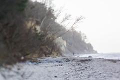 Beach Walk (photalena) Tags: ostsee diedrichshagen cliffcoast 7dwf landscape lensbaby composerpro edge80