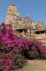 Temple Bougainvillea (peterkelly) Tags: digital canon 6d india asia khajuraho kamasutratemple flowers temple building medieval stone carving bougainvillea shrub bush