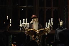 DSC_0324 (SherryFlox) Tags: wonderful wand harrypotter wizard dumbledore snape hermione gryffindor ron voldemort tour warnerbros london kingscross amazing gorgeous christmas