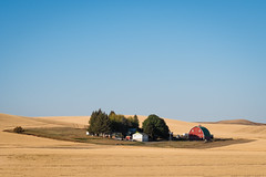 Palouse, Washington (Sunny Herzinger) Tags: palouse autumn fujixpro2 washington travel idyll red xf56mmf12 sky clear usa yellow trees field unitedstates us