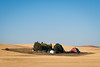 Palouse, Washington (Sunny Herzinger) Tags: palouse autumn fujixpro2 washington travel idyll red xf56mmf12 sky clear usa yellow trees field unitedstates us