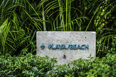 Playa Sign (Mabry Campbell) Tags: 2016 december mabrycampbell mexico nayarit puntamita rivieranayarit beach beachentrance coastal commercialphotography fineart fineartphotography green image photo photograph photographer photography sign trip tropical tropics f32 december102016 20161210campbellh6a84692 100mm ¹⁄₁₀₀sec 100 ef100mmf28lmacroisusm