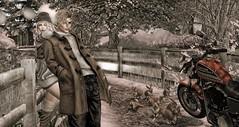 Cold Days..Warm Hearts. (Nadia..Malady Baxton) Tags: secondlife winter warm cold hearts outdoors rabbits