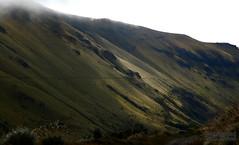 High Andeas (2) (Mahmoud R Maheri) Tags: mountain andeas ecuador cloudforest velvet quito grass vegetation clouds