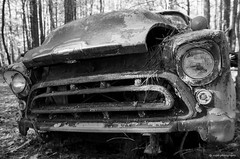 Old Car City on film (dpsager) Tags: bw chevrolet dpsagerphotography f1n film ga georgia kodak oldcarcity tmax100 junkyard blackwhitephotos blackandwhiteonly blackwhite