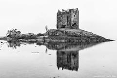 Castle Stalker Mono (roseysnapper) Tags: bw castlestalker nikond810 blackandwhite lowtide appin scotland calm landscape monochrome peaceful reflection sea seascape shore still tranquil water