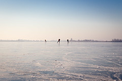Schaatsen op de Oostvaardersplassen