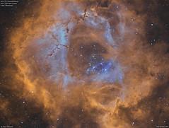 NGC2244_Hubble_2017-1-26 (MarkLB57) Tags: ngc2237 ngc2244 astronomy astrophotography azeq6gt zwoasi1600mmcool zwoefwelectricfliterwheel nebula monoceros hubblepalette ha oiii marklb57 rosettenebula