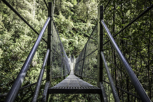The swing bridge #1, Montezuma Falls, Tasmania's West Coast