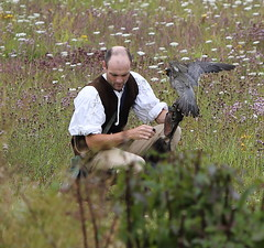 Sarson Falconer (BouncyTigger) Tags: hawk trust peregrine conservancy falconer sarson