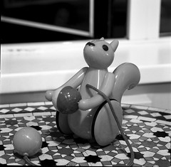 Orange Squirrel Toy (triebensee) Tags: blackandwhite film monochrome zeiss hasselblad f4 xtol 500cm sonnar selfdeveloped ilfordfp4 150mm proxar ilfordfp4125 f1m