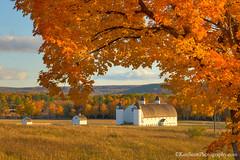 Color Tour ... D. H. Day Farm (Ken Scott) Tags: autumn usa fall october michigan fallcolors barns lakemichigan greatlakes hdr freshwater voted leelanau colortour 2015 45thparallel dhdayfarm sbdnl sleepingbeardunenationallakeshore mostbeautifulplaceinamerica