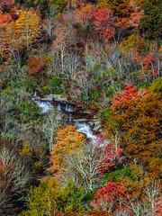 Lower Falls-7951 (kasiahalka (Kasia Halka)) Tags: nc asheville outdoor northcarolina blueridgeparkway 151 westernnorthcarolina
