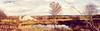 MIKE6519-Pano (Michael William Thomas) Tags: wedding portrait panorama ny newyork portraits landscape photography photo buffalo photographer westernnewyork wny mikethomas michaelthomas mtphoto buffalowedding michaelwthomas