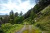 Rhondda Valley (2)
