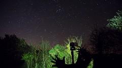 DSC01375 (kyleryanevans) Tags: trees shadow plants tree way stars outdoors shadows outline milky milkyway