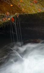 Fil d'eau sur l'Orige,  Valle d'Orlu, Arige, Midi-Pyrnes (lyli12) Tags: nature automne landscape nikon eau paysage cascade arbre couleur feuille arige ruisseau poselongue d7000
