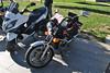 Moto Guzzi V35C (TAPS91) Tags: solo moto cuore guzzi 2° raduno carburatore v35c