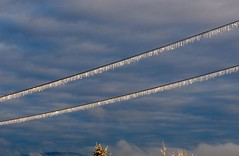 Icicles on wire (piranhabros) Tags: ice icy frozen wires sky clouds winter december morning