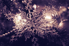 Snowflake (VIProduction) Tags: snow ornaments ornament canon canon6d canonphotos christmas view visual beauty beautiful newyorkcity nyc newyork art digital flickr graphic graphicdesign holiday holidays heaven heavenly happy jinglebells light lights love photography photographer brooklyn inspire inspiring unity