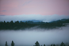 the calm amidst the storm (catklein) Tags: fog beautiful pink pastel view nature storm california