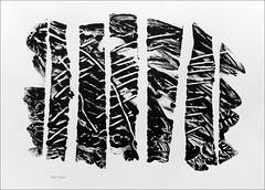 Decalcomania monoprint 2010. (Dave Whatt) Tags: decalcomania fineartprints fineartprinting blackandwhite art printing serendipity acrylicandpencil