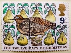 "great xmas stamp GB Great Britain 9p (illustration of old xmas-song ""The Twelve Days of Christmas""; ""Rebhuhn im Birnbaum"" Illustration britisches Weihnachtslied) navidad sello noel timbre Great Britain United Kingdom stamps jul frimerker poste-timbres UK (stampolina, thx for sending stamps! :)) Tags: stamps 切手 briefmarken スタンプ postzegel zegels марки टिकटों แสตมป์ znaczki 우표 frimærker frimärken frimerker 邮票 طوابع bollo francobollo francobolli bolli postes timbres sello sellos selo selos razítka γραμματόσημα bélyegek markica маркица pulları tem perangko gb uk unitedkingdom greatbritain england grossbritannien xmas christmas weihnachten navidad merrychristmas pullar poštovné frimaerke granbretagna granbretaña vánoce χριστούγεννα クリスマス 圣诞节 рождество jul natale bożenarodzenie noel postage briefmarke timbre yóupiào марка poštarina wysyłka pečiatky ค่าไปรษณีย์ rebhuhn birnen partridge pear thetwelvedaysofchristmas"