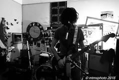 P1000584 (mtmsphoto) Tags: lightroom jfflickr lumix humus avola livemusic borghesi