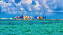 Porto de Galinhas (fabricio78macedo) Tags: verão summer sol sun northeast brasil brazil pernambuco recife olinda ocean mar sea oceano atlântico praia portodegalinhas piscinasnaturais ipojuca jangada verde azul mergulho paraíso