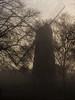 Ashby's Mill. (Owen Llewellyn) Tags: cygnusimaging london lambeth brixton ashbymill ashbysmill windmill canon eos1dx 1dx heritage urban southlondon fog foggy sunset