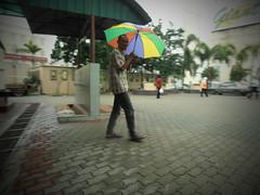 Rain (C.A.Zulkifle) Tags: rain umbrella pinhole streetphotography street olympus cazulkifle zukayo zulkiflecheabdullah olympusphotojournalist