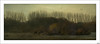 Hasta la primavera siguiente (V- strom) Tags: naturaleza nikon nikon50mm nikon2470 nubes agua río fauna flora texturas ave luz textura otoño invierno paisaje