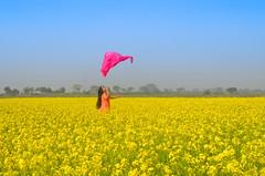 Let your soul breath! (ashik mahmud 1847) Tags: bangladesh beautiful people yellow sky woman d5100 nikkor joy happiness ngc
